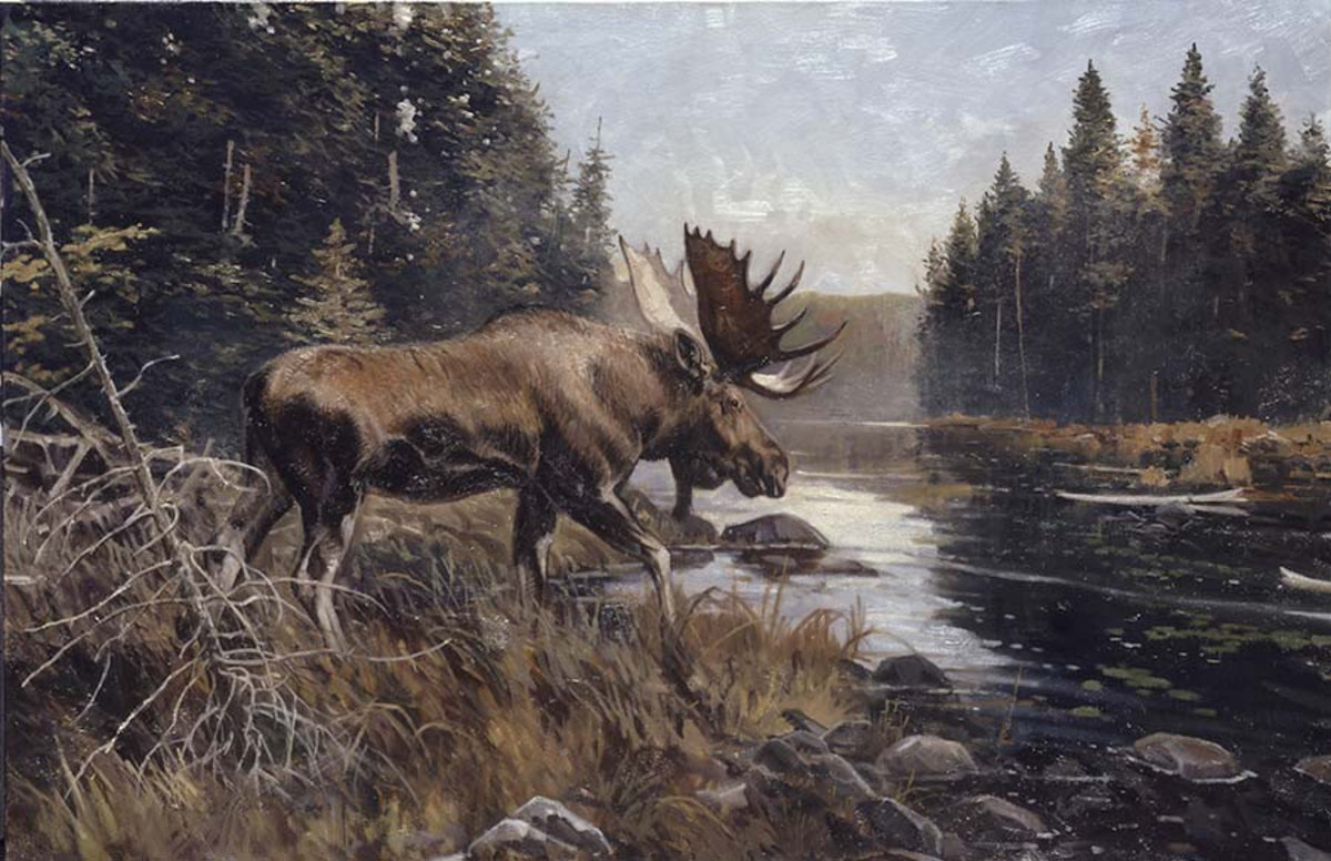 Algonquin Sunning Wall Mural Additional Thumbnail