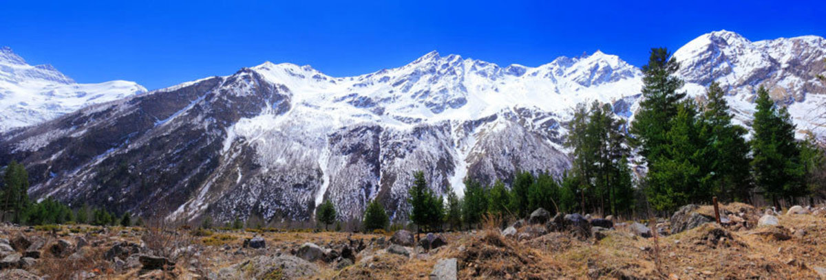 beautiful view of mountains in the Elbrus area, with pine trees in the foreground Sample