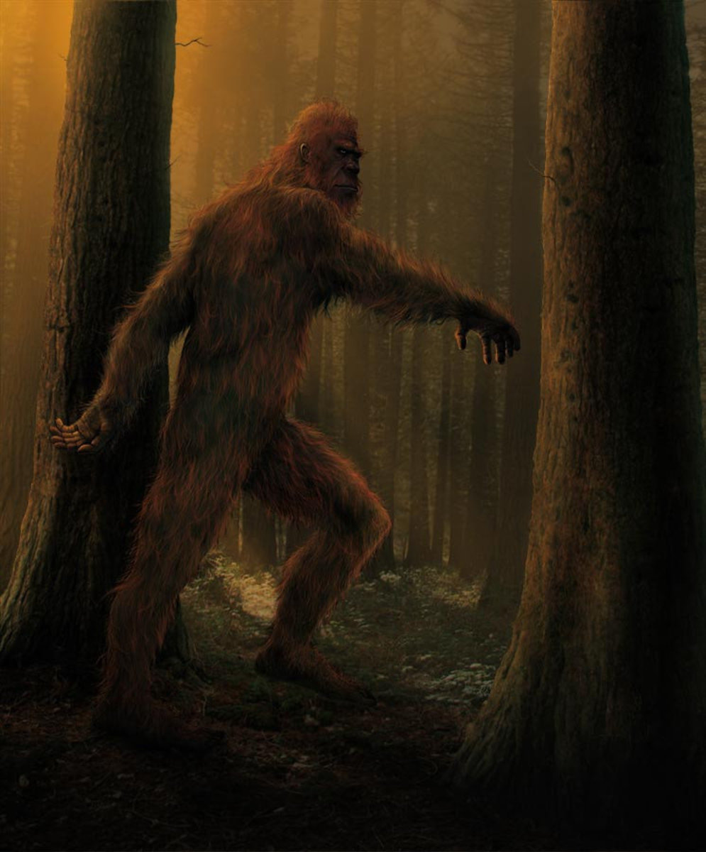 Bigfoot Wall Mural Sample