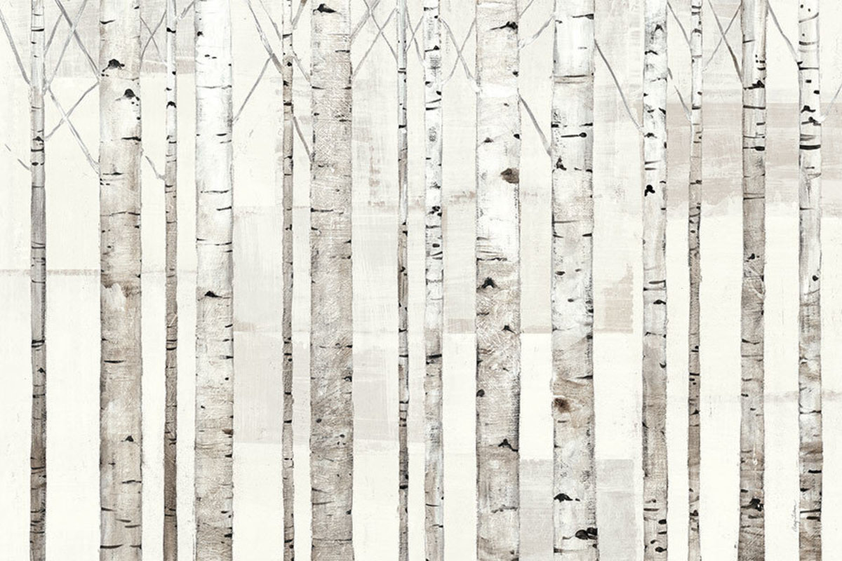 Birch Trees on White Mural Wallpaper Additional Thumbnail
