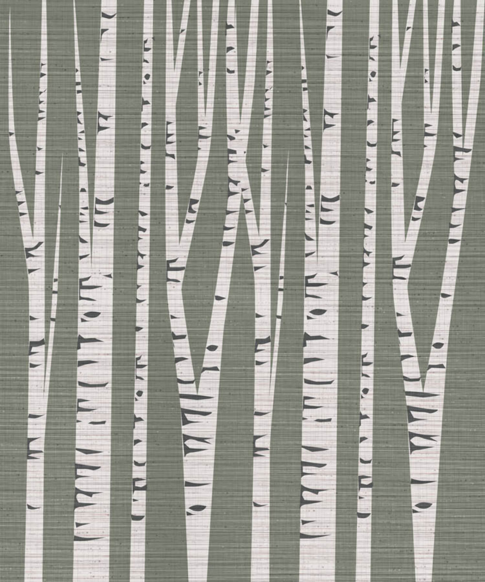 modern illustration of birch trees on a textured background
