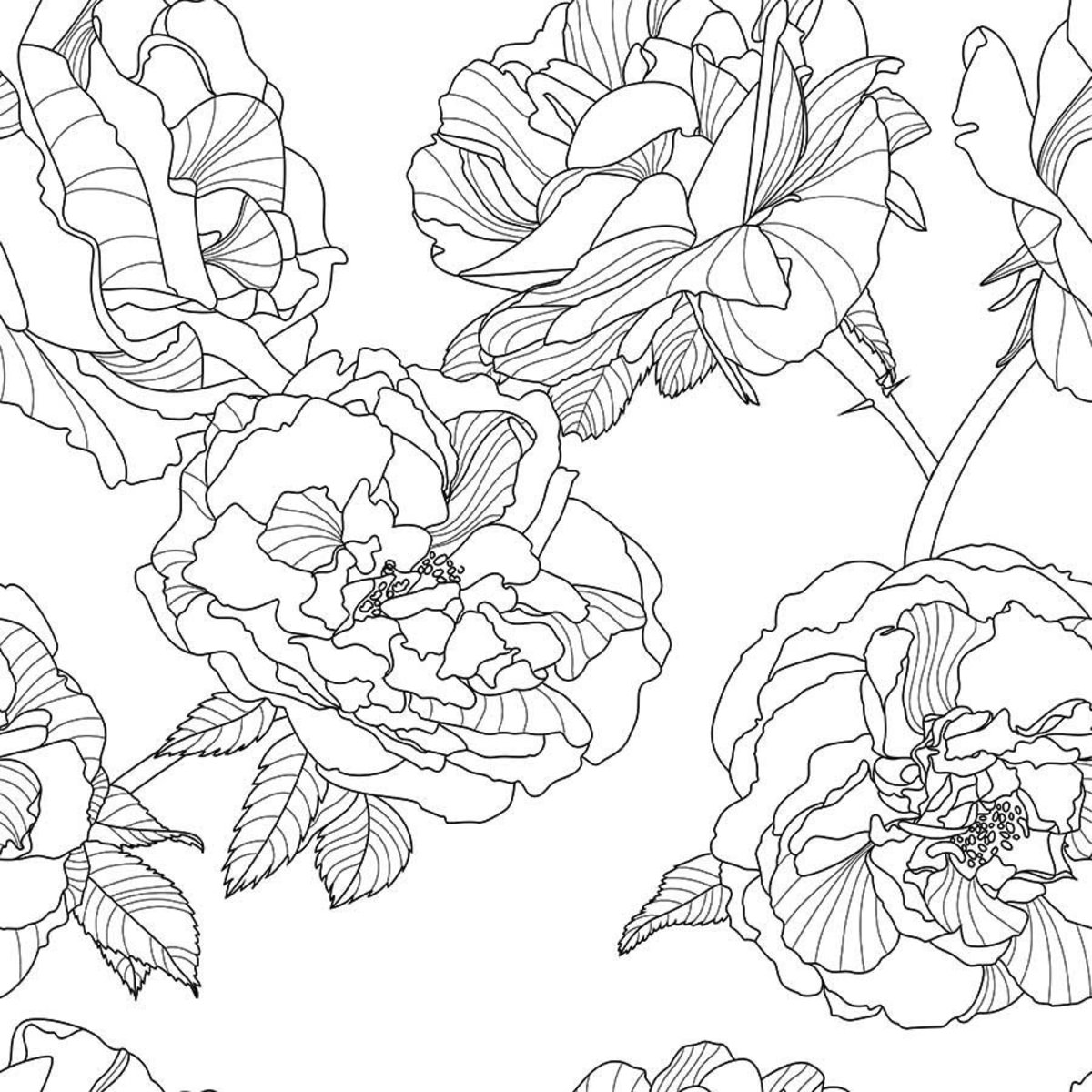 Black And White Floral Pattern Mural Murals Your Way