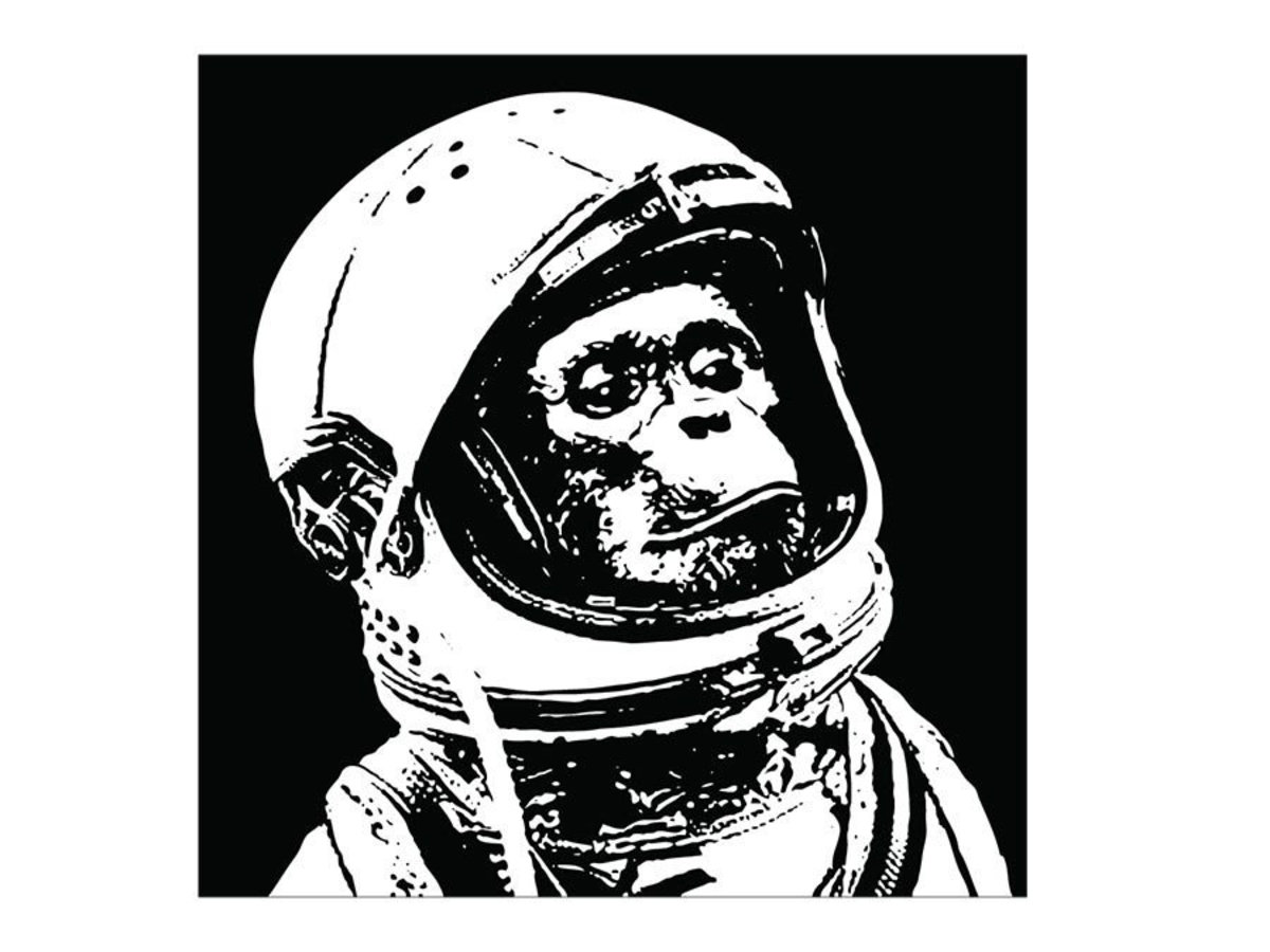 Chimp in Space Wall Mural Additional Thumbnail