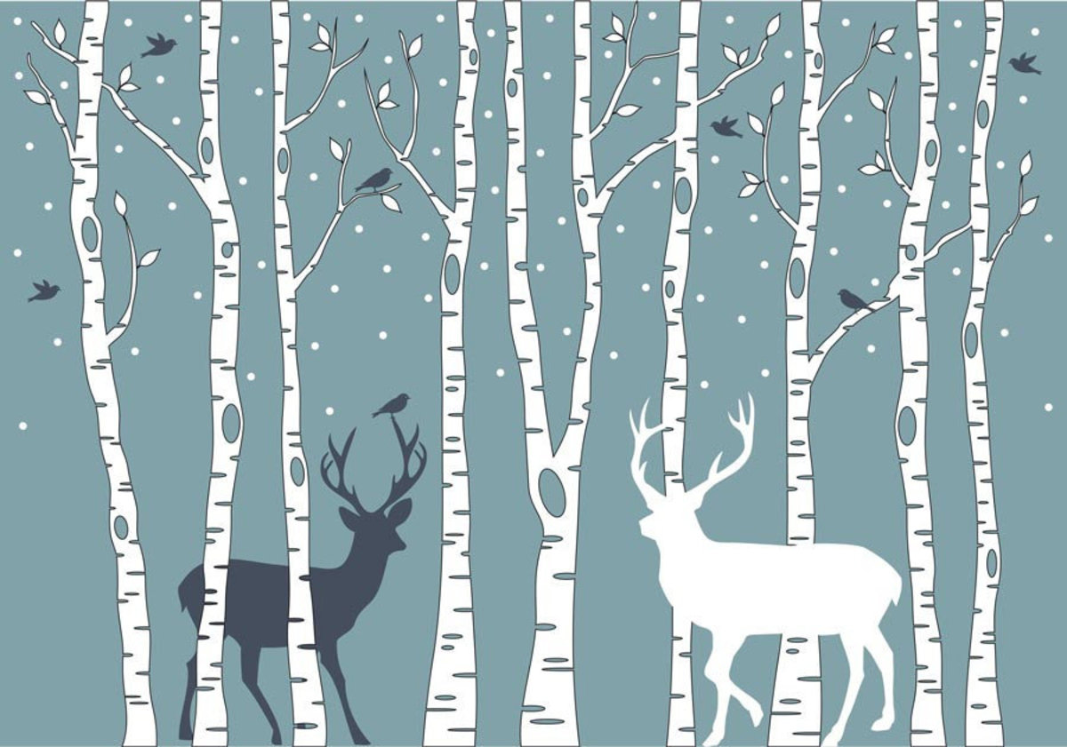 Deer And Birch Trees Additional Thumbnail