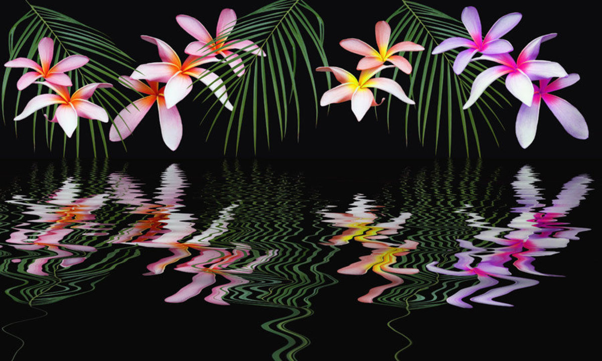 Flower Reflection Mural Wallpaper Sample