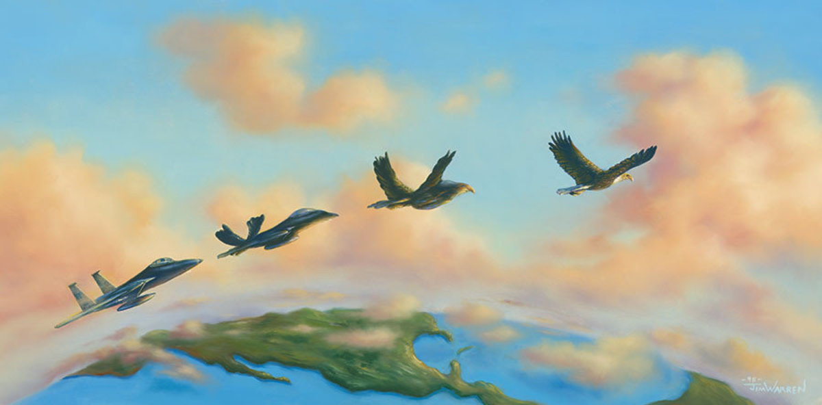 Fly Like An Eagle Wall Mural Additional Thumbnail