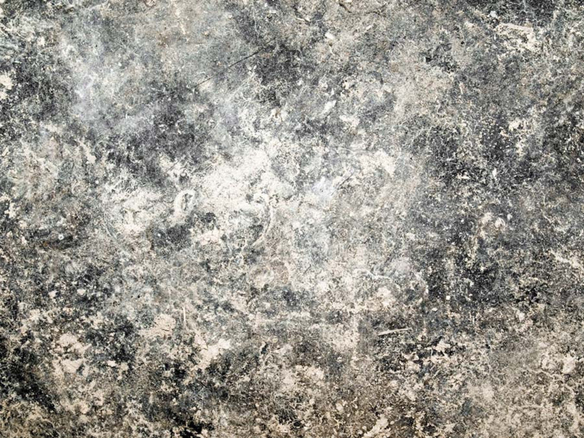 a gritty white and gray concrete texture Sample