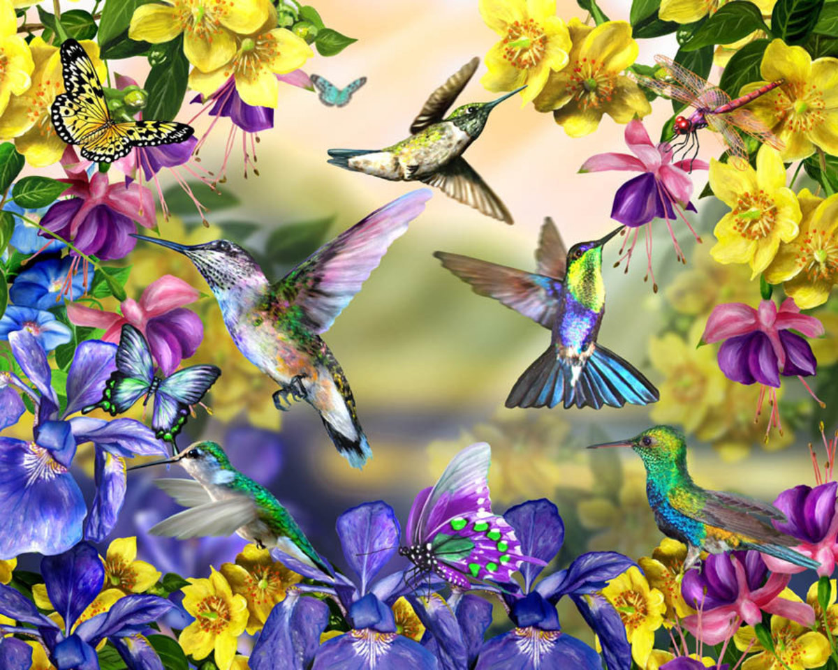 Hummingbirds and Butterflies Mural Wallpaper Sample