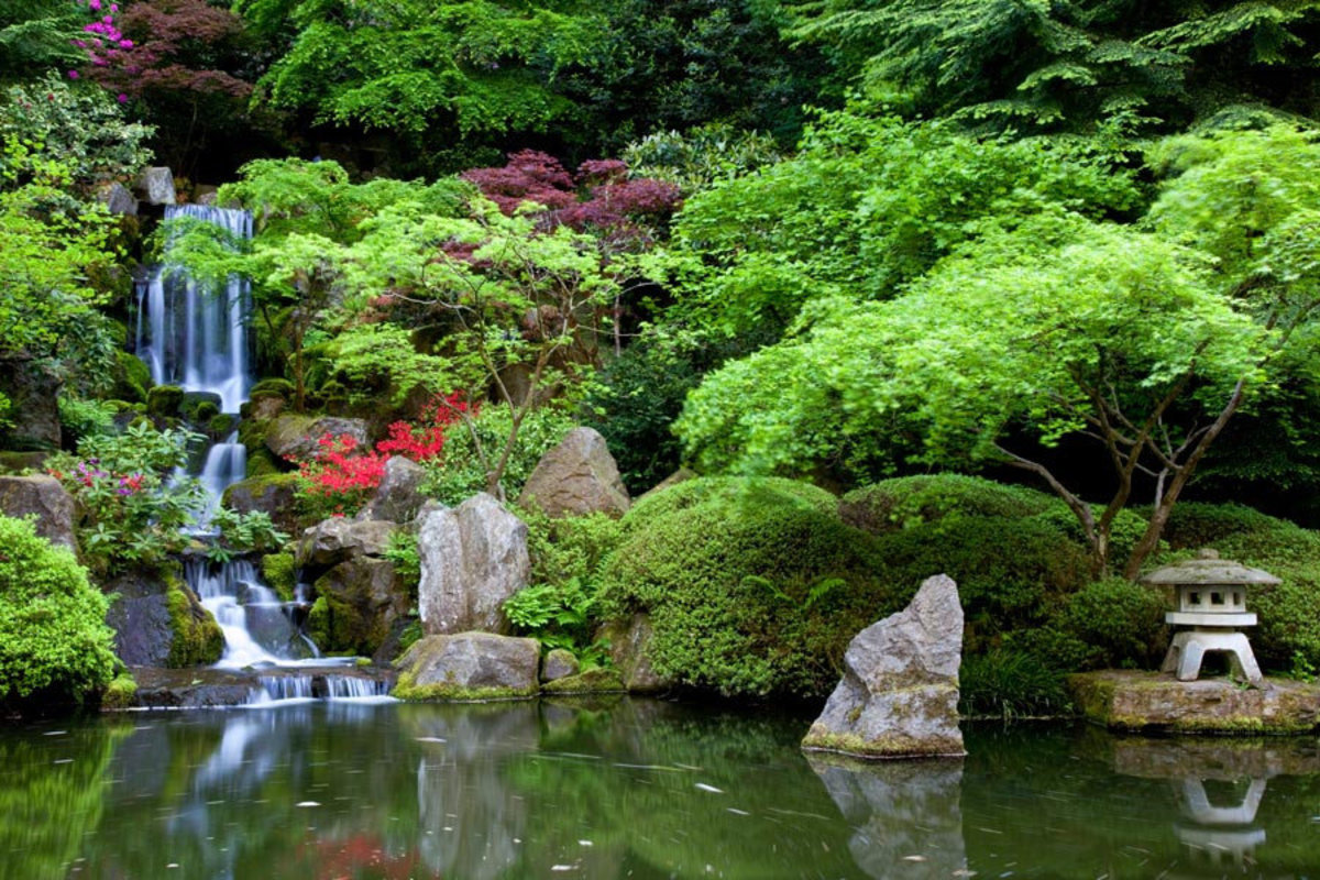 Picture of a traditional Japanese garden filled with plants, a pond, and a waterfall Sample