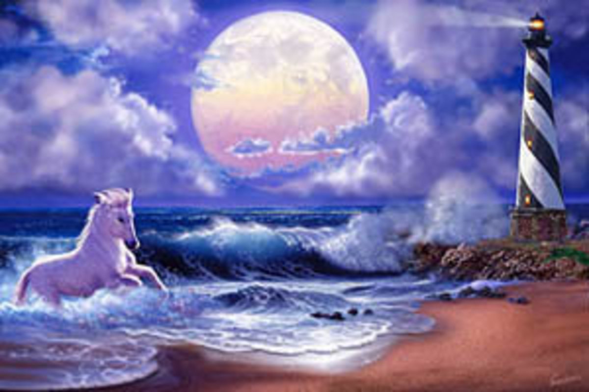 New Horse - Cape Hatteras Wall Mural Sample