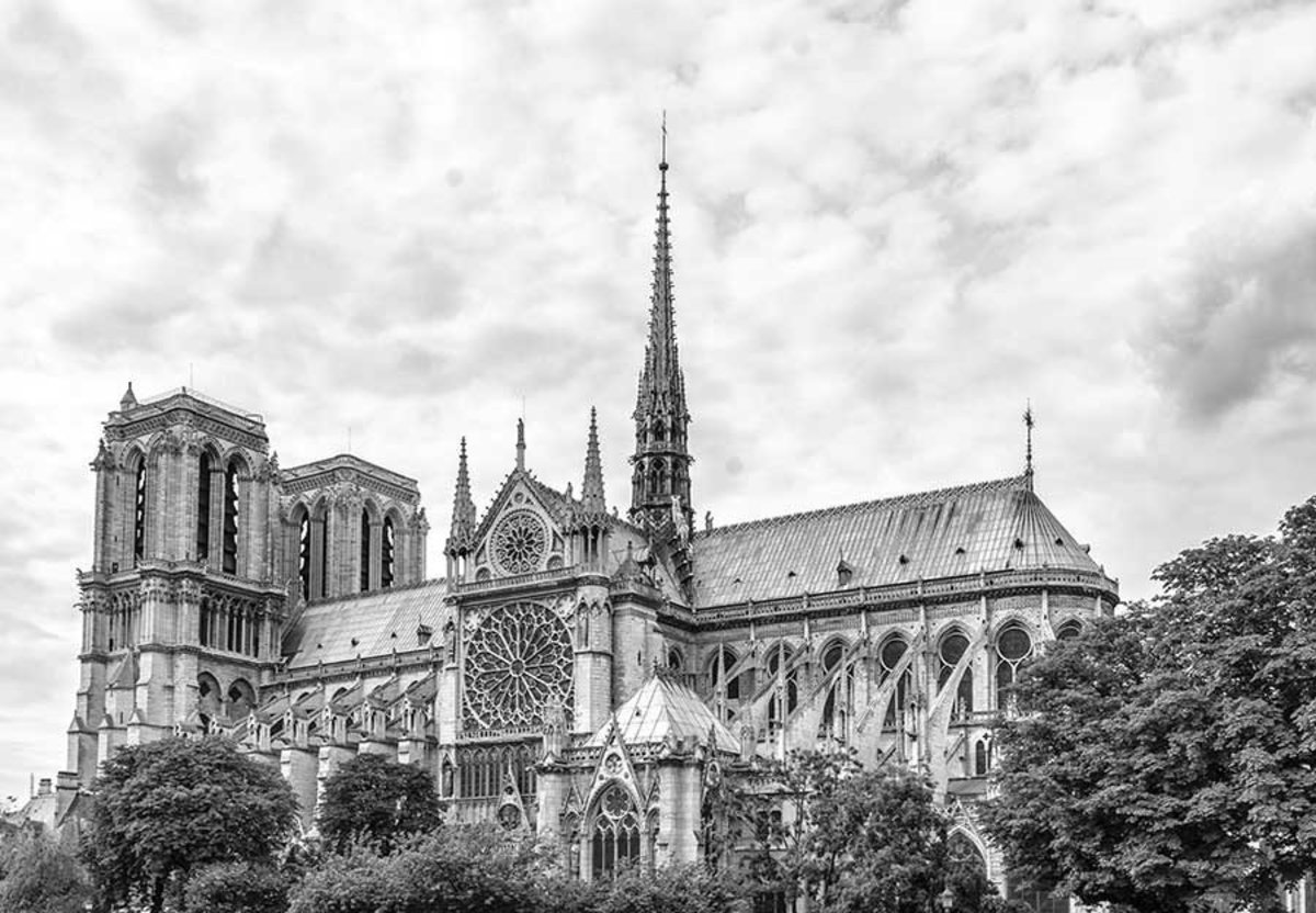 Notre Dame Cathedral, Paris Wall Mural Sample