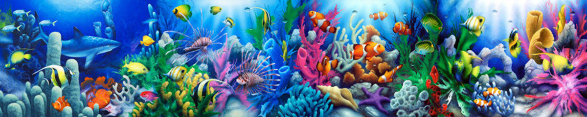 Image for Reef Life 2