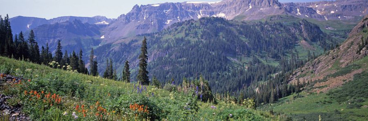 Image for San Juan Mountains