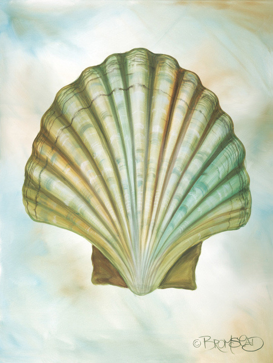 Image for Scallop