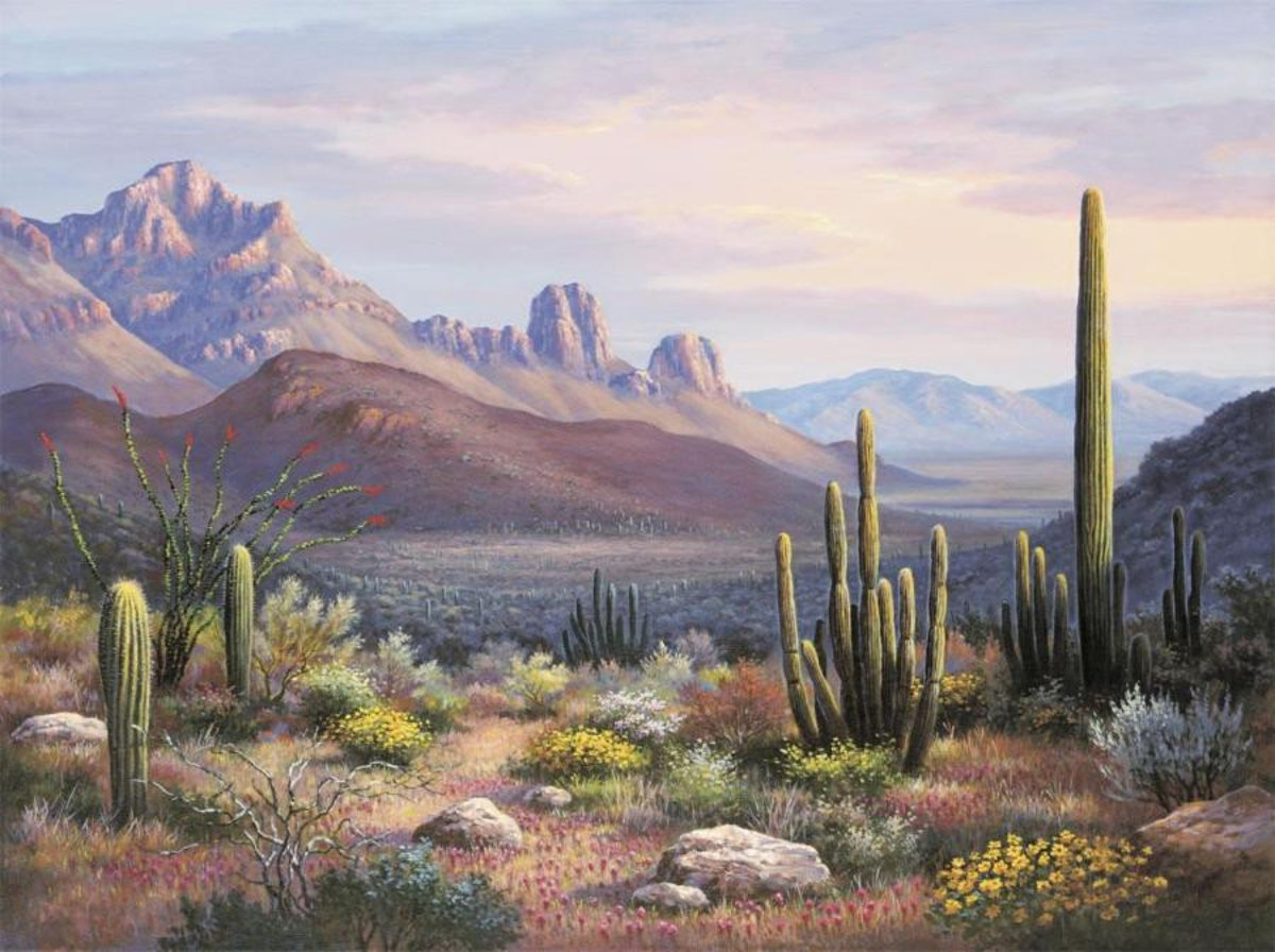 Image for Sonoran Sunset