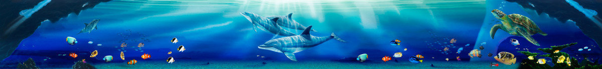 Image for Sunlit Kauai Dolphins - Panoramic