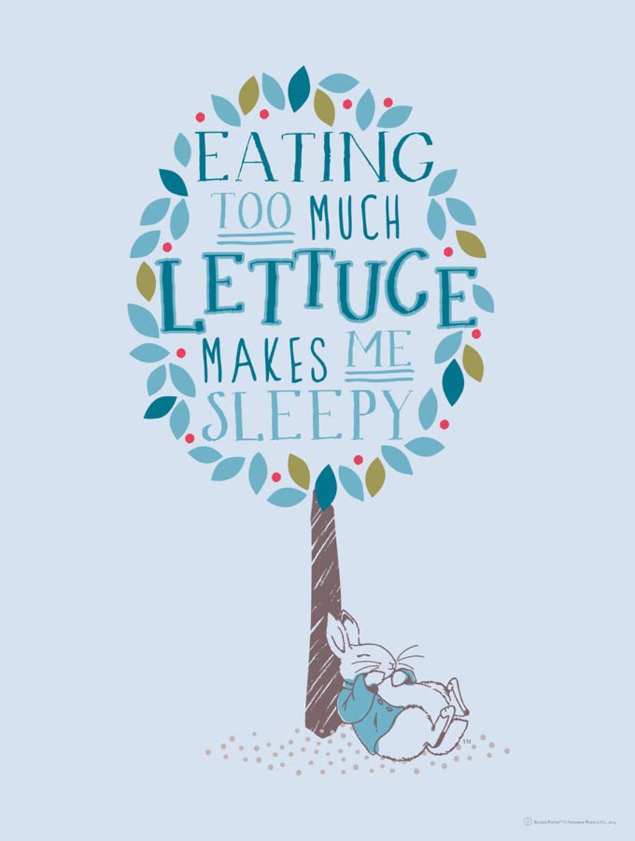 Image for Too Much Lettuce - Peter Rabbit - Blue