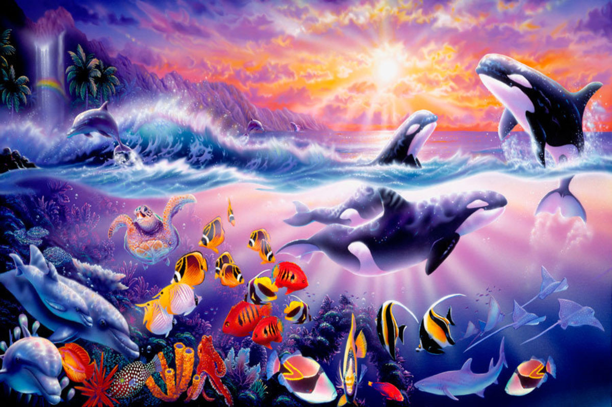 Image for Tropical Treasures - Orcas