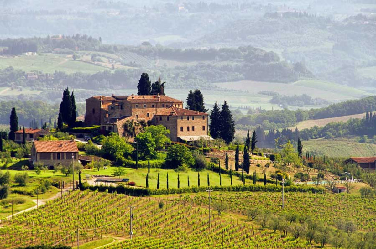 Tuscany Vineyard Wall Mural Sample