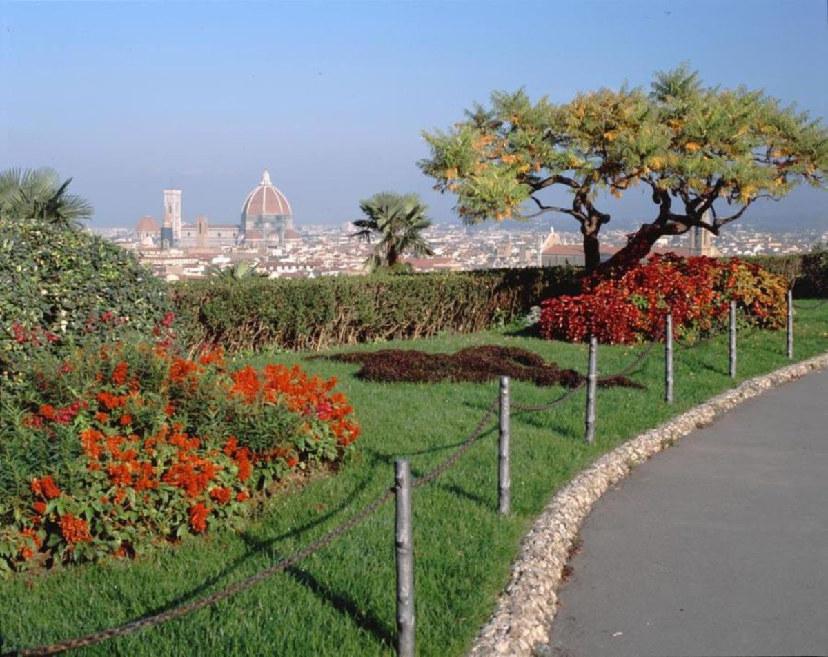 View From Piazza Michelangelo Wallpaper Mural
