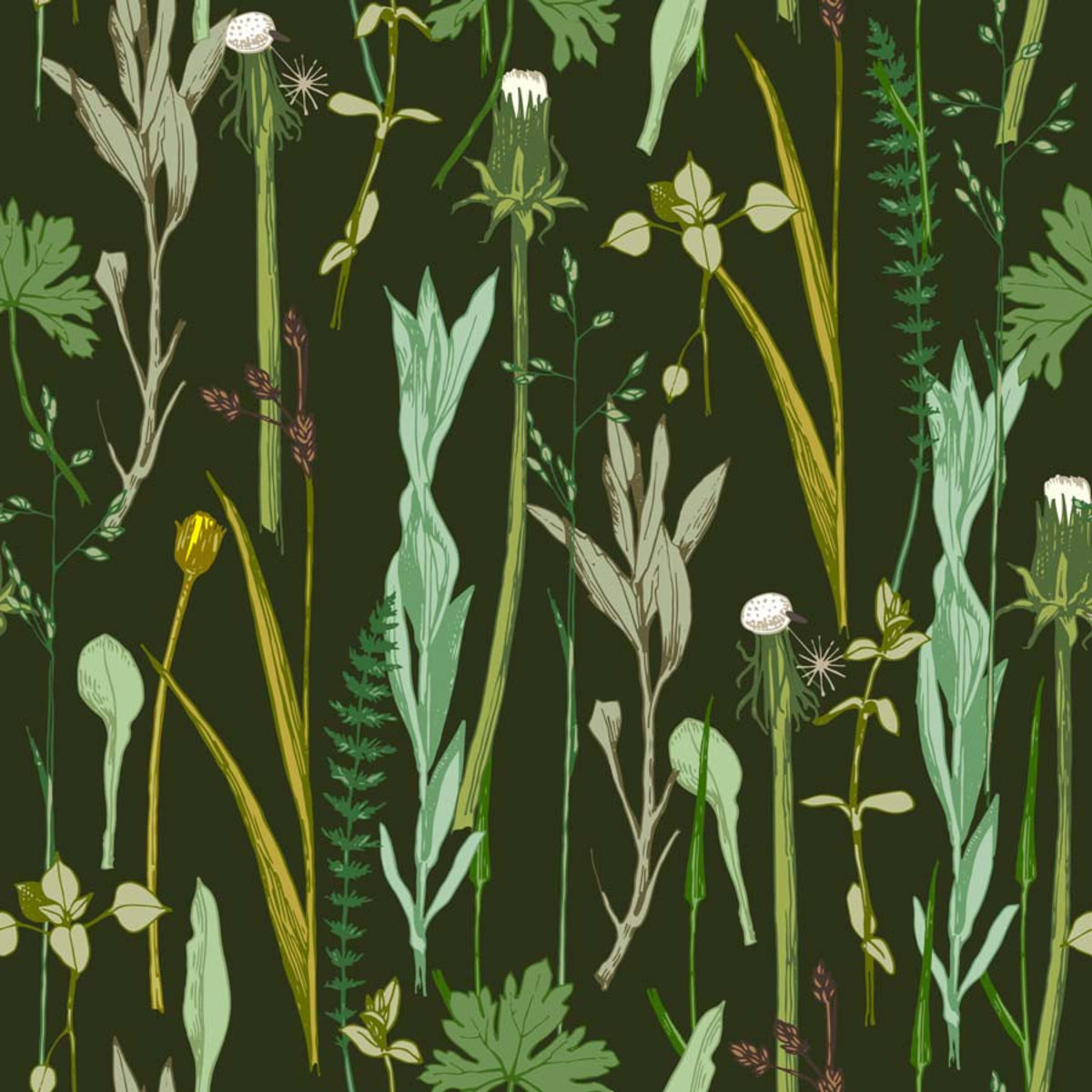 Hand-drawn herbs and plants rest atop a deep midnight green backdrop pattern Sample